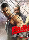 Brothers Mp3 Songs