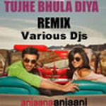 Tujhe Bhula Diya - (Various Dj Mix) By Various DJs Mp3 Songs