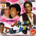 Afsana Dilwalon Ka Mp3 Songs